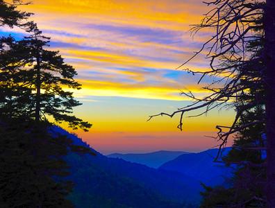 Smoky Mountains 56