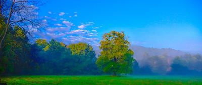 Smoky Mountains 315