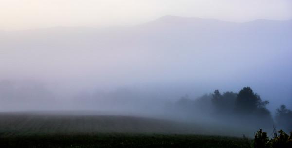 Smoky Mountains 302