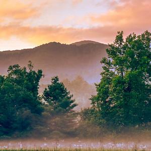 Smoky Mountains 305