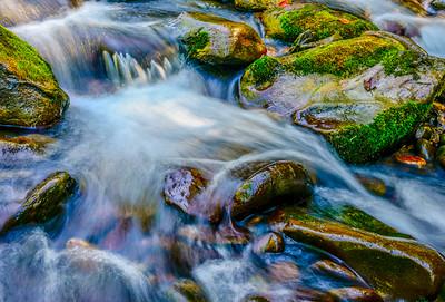 Smoky Mountains 236