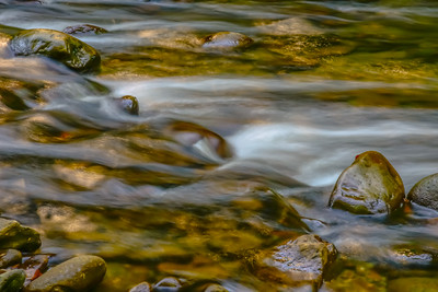 Smoky Mountains 210
