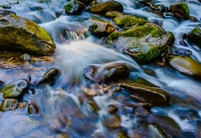Smoky Mountains 229