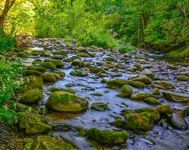 Smoky Mountains 215