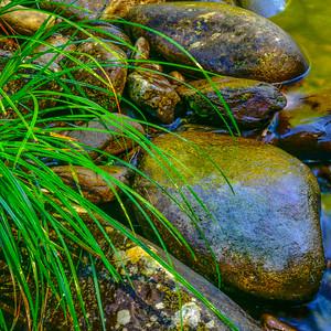 Smoky Mountains 230