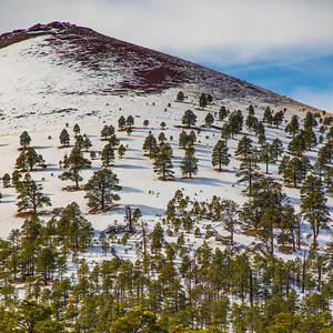 SUNSET CRATER 8