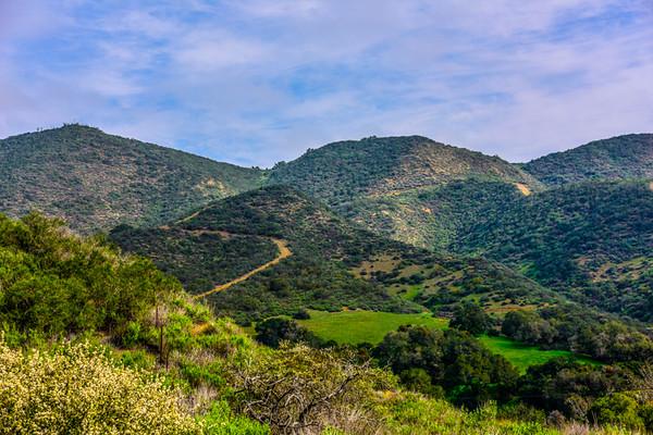 CA Coast Drive 4