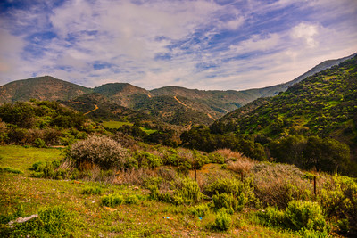 CA Coast Drive 1