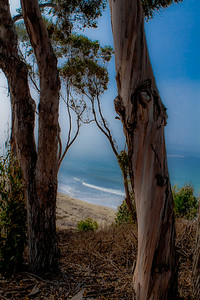 Santa Barbara ABOVE 2