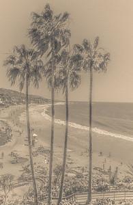 Laguna Beach 18