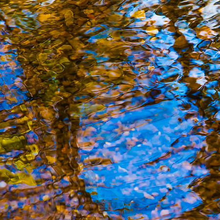 FALL REFLECTIONS  15