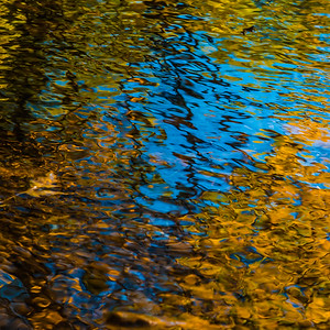 FALL REFLECTIONS  7