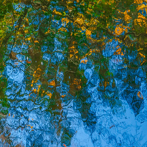FALL REFLECTIONS  9