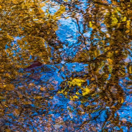 FALL REFLECTIONS  17