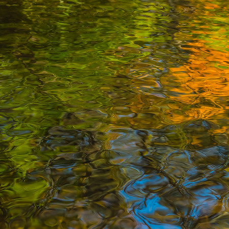 FALL REFLECTIONS  16