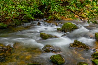 FRESH WATER   14