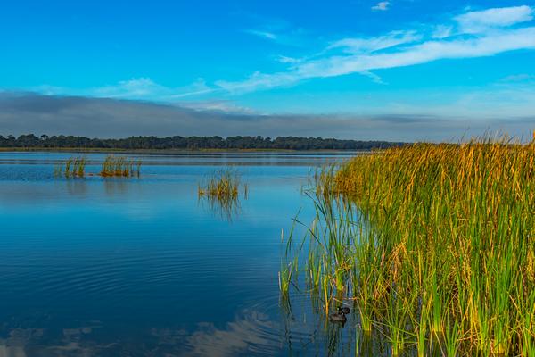 LAKE VIEW  17
