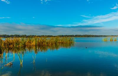 LAKE VIEW  8