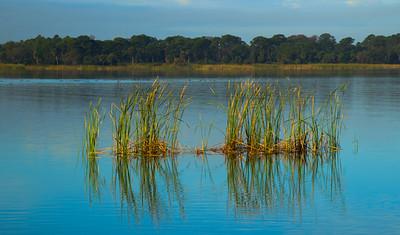 LAKE VIEW  13