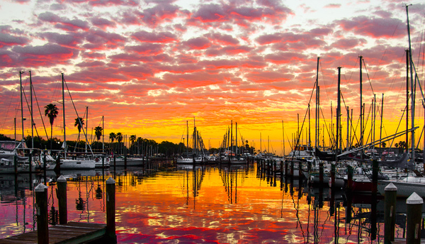 Sunrise Vinoy Basin 15