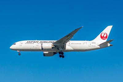 Japan Airlines, JA834J, Boeing 787-8 Dreamliner, msn 34842, Photo by John A Miller, LAX, Image PA005LAJM