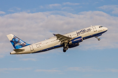 JetBlue Airways, N703JB, Airbus A320-232, msn 3381, Photo by John  A Miller, TPA, Image  T133RAJM