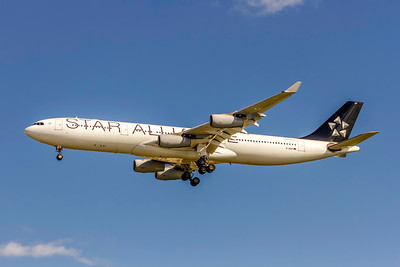 Lufthansa Airlines, D-AIGP, Airbus A340-313, msn 252, Photo by John A Miller, TPA, Image XX006LAJM, Star Alliance, Special Paint Scheme