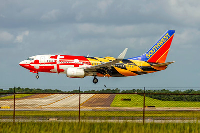 Southwest Airlines, N214WN, Boeing 737-7H4(WL), msn 32486, Photo by John A Miller, TPA, Image TT177LAJM
