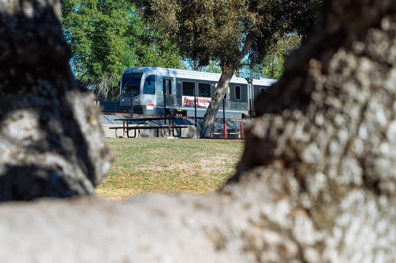 A train passes Newcastle Park in Arcadia.