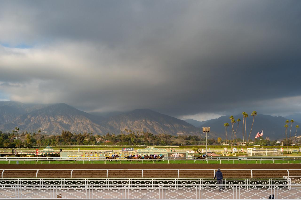 A race on the turf at Santa Anita Park.