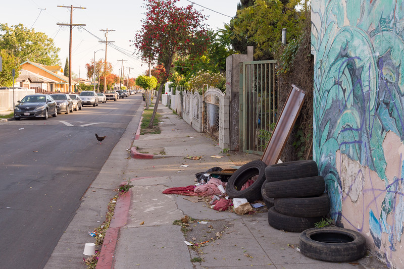 Trash on sidewalk near 103rd Street in Watts with chicken crossing road.