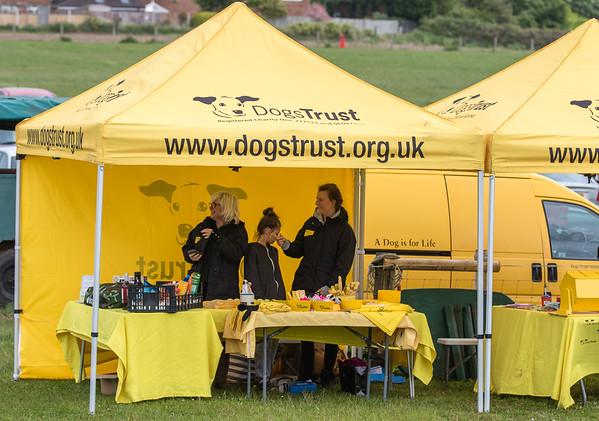 Dog's Trust Roz (575 of 1247)