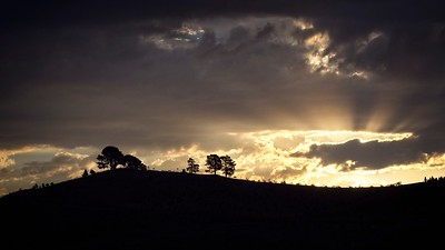 sunset over Arboretum