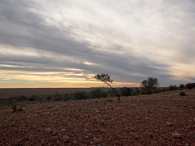 Toorale National Park (views of Gundabooka)