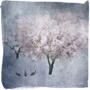 #TinyDreamImages Under the Trees