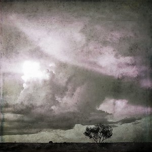 #TinyDreamImages Storm Cloud