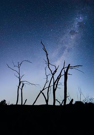 Milky Way over Weddin NP
