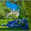 Portugal Flowers