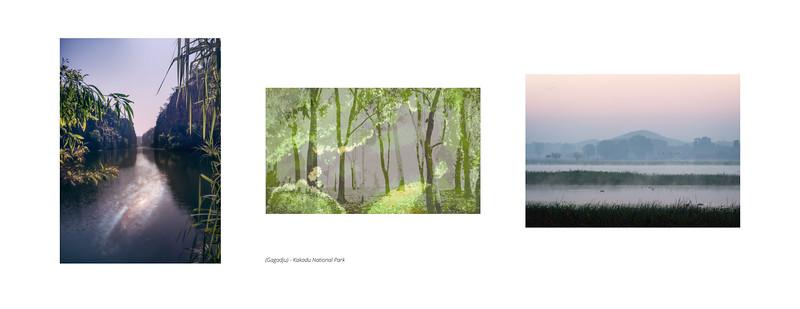 (Gagadju) - Kakadu National Park