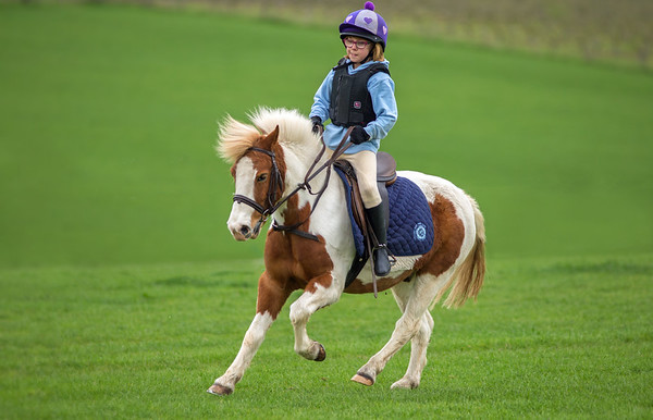 Croome Hunt Pony Club Games Training April