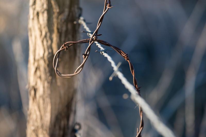 The Barbed Loop