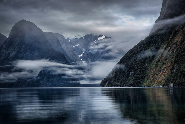 Milford Sound Woke Moody That Morning