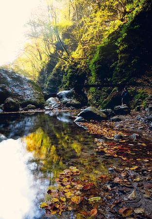Stillness At The Edge