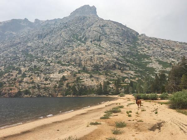 Benson Lake horsepack trip