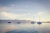 Sailboats in Morro Bay, California