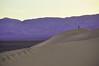 Dune Walker Original