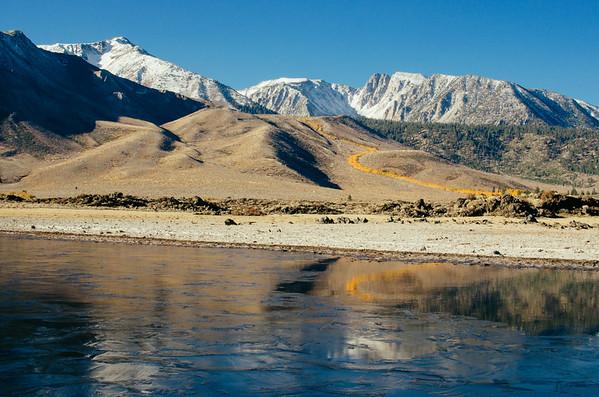 Laurel Creek fall colors, near Mammoth Lakes
