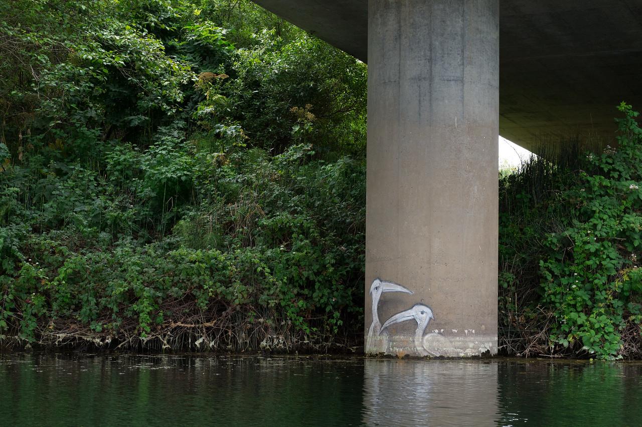 Wildlife graffiti along Gualala River, Northern California