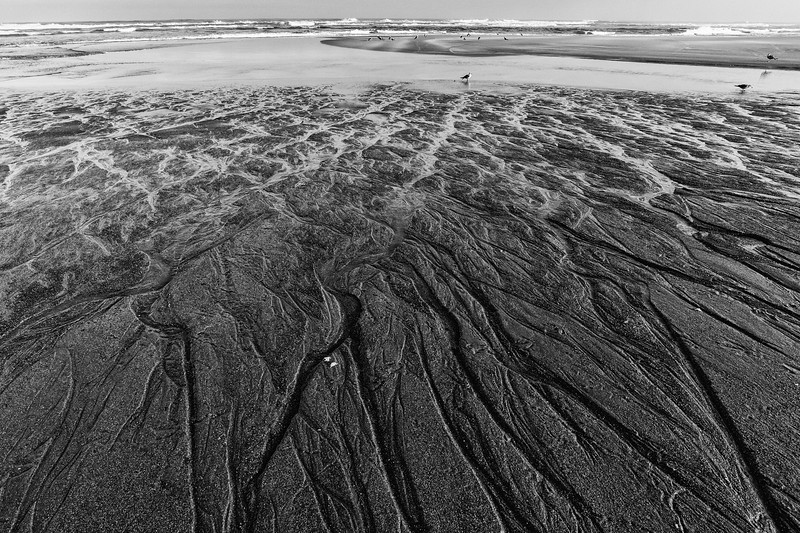 Patterns in the sand, MacKerricher State Beach, Fort Bragg, CA
