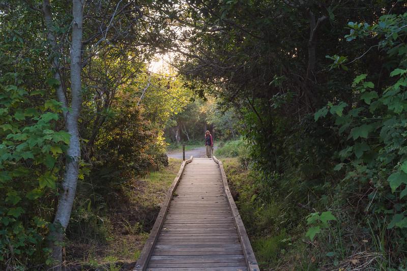 Boardwalk around Cleon Lake, MacKerricher State Park, CA